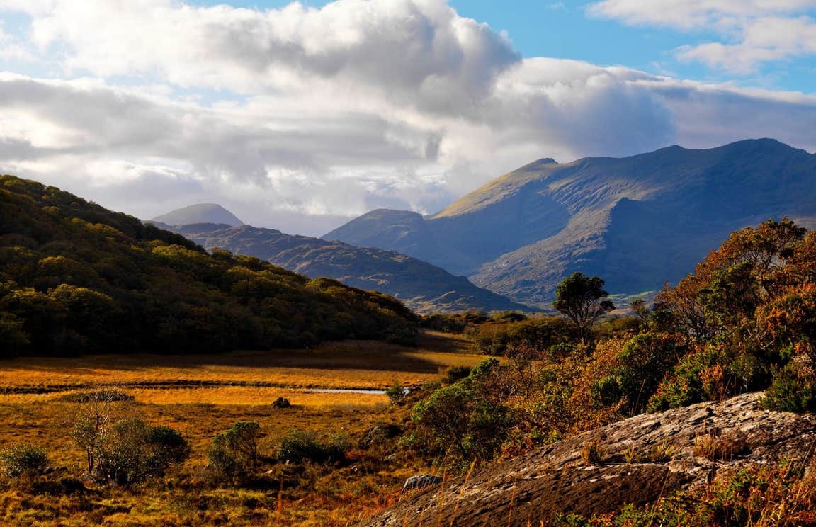 Autumnal colours on the mountains in Killarney National Park, Kerry