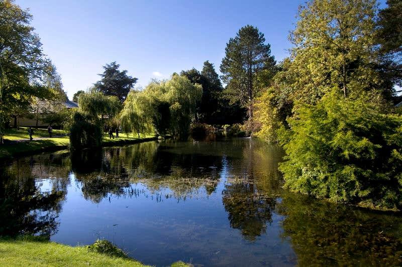 Lake in the Japanese Gardens, Co. Kildare