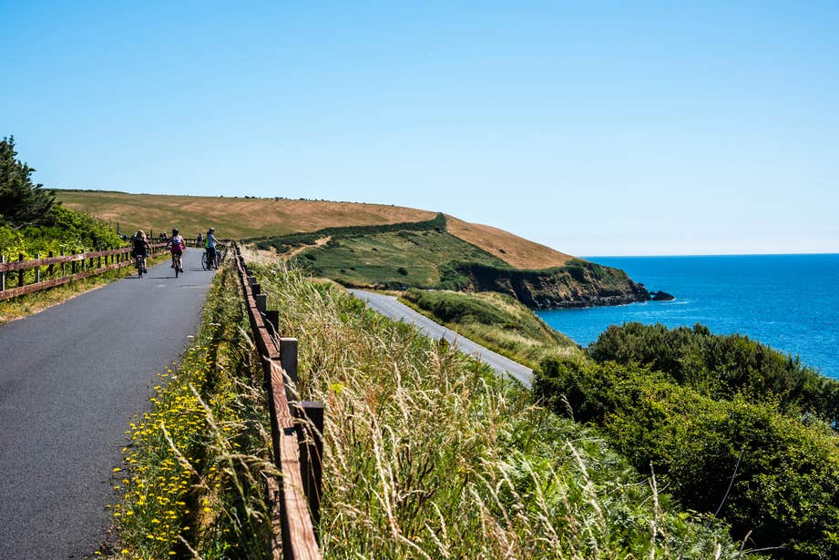 Three people cycling by the sea along the Waterford Greenway in County Waterford