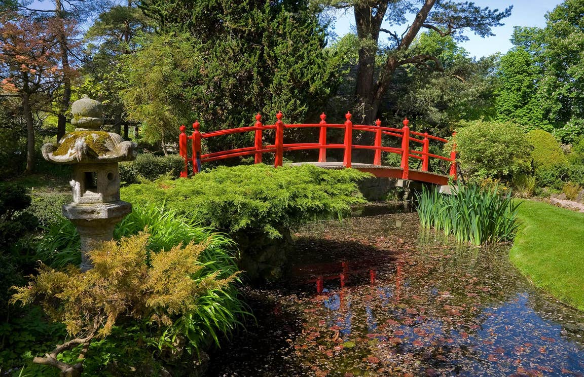 A red bridge crossing water in the Japanese Gardens in Kildare
