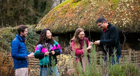 People picking flowers in National Heritage Park, Wexford
