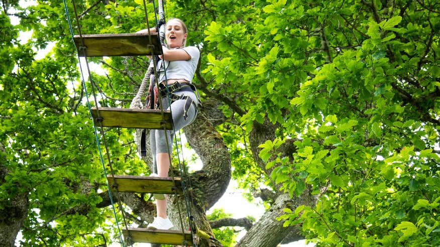 Take all the family to Lough Key Forest and Activity Park.