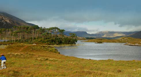 Off the beaten track cycling in Connemara National Park