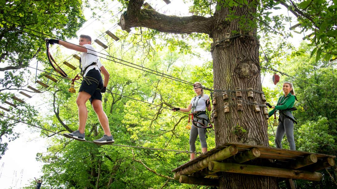 Two people ziplining through the trees with the guidance of an instructor at Lough Key Zip Line