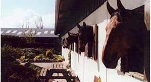 Annaharvey Farm Equestrian Centre