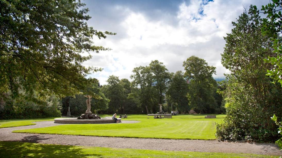 A sunny day at Iveagh Gardens, Dublin