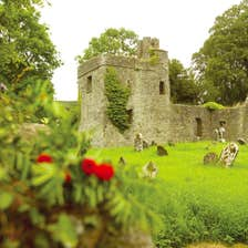 Image of Loughcrew Gardens in Oldcastle in County Meath