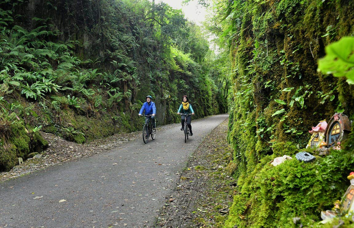 Two people cycling through tree-lined country roads as they enjoy a tour with The Greenway Man - Bike Hire in County Waterford.