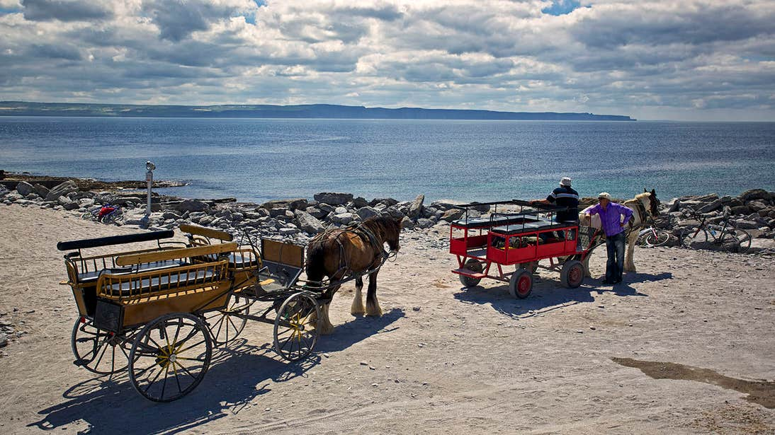 Two Pony and Trap beside the sea in Inis Mor, Aran Islands, Galway