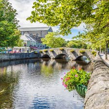 Green trees hanging over a river in Westport Town, Mayo