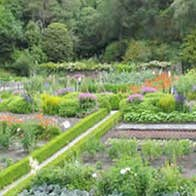 Image of Glenveagh Castle Gardens