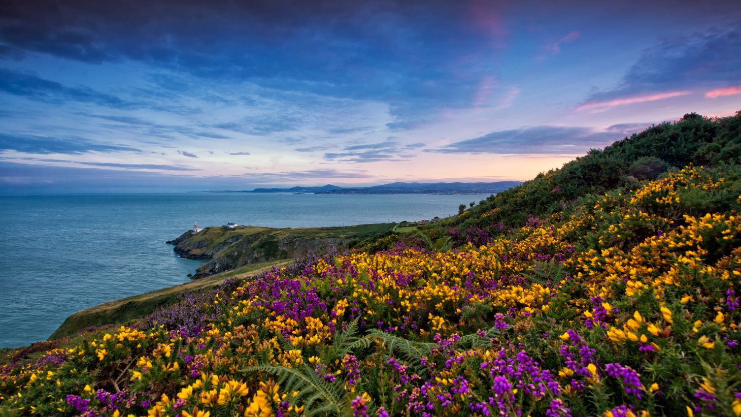 Soak up the stunning Howth scenery.