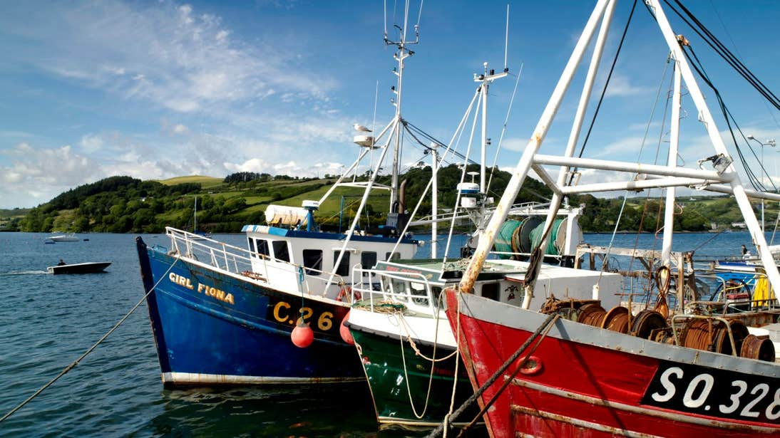 Colourful fishing boats at the village of Glandore