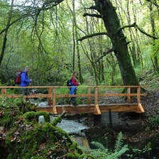 Image of walkers crossing the bridge in Ballyhoura in County Limerick