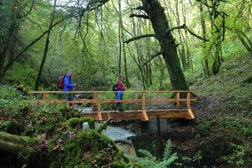 Image of walkers crossing the bridge in Ballyhoura in County Limerick