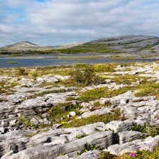 Image of the Burren landscape, County Clare