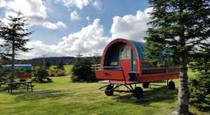 Clissmann Horse Caravans