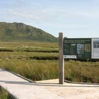 Image of Claggan Mountain Coastal Trail