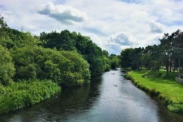 Image of the River Liffey in Newbridge in County Kildare
