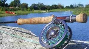 Southern County Fishing Resort & Activities Resort
