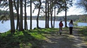 Castle Lake Loop