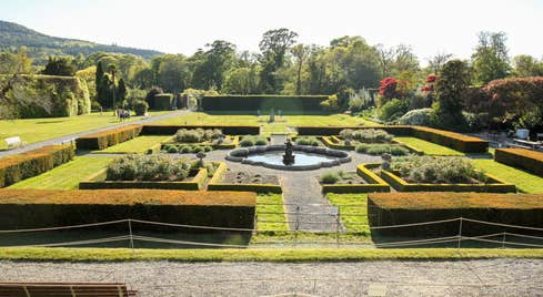 Glorious trees, shrubs and a water feature at Killruddery House and Gardens