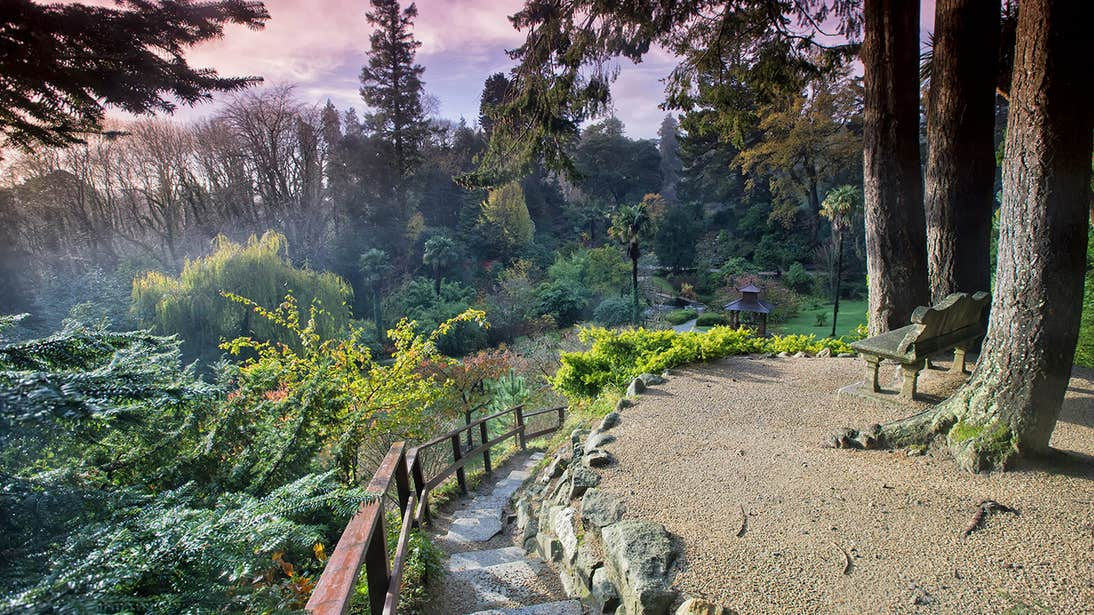 A trail at Powerscourt House And Gardens in County Wicklow