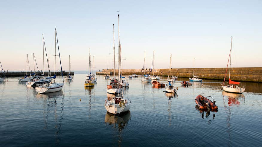Take your pup for a walk along Bray Harbour.