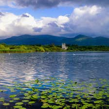 Lily pads in the water in front of Killarney Castle in County Kerry