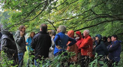 Blackstairs Eco Trails