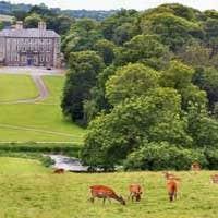 Doneraile Court & Wildlife Park
