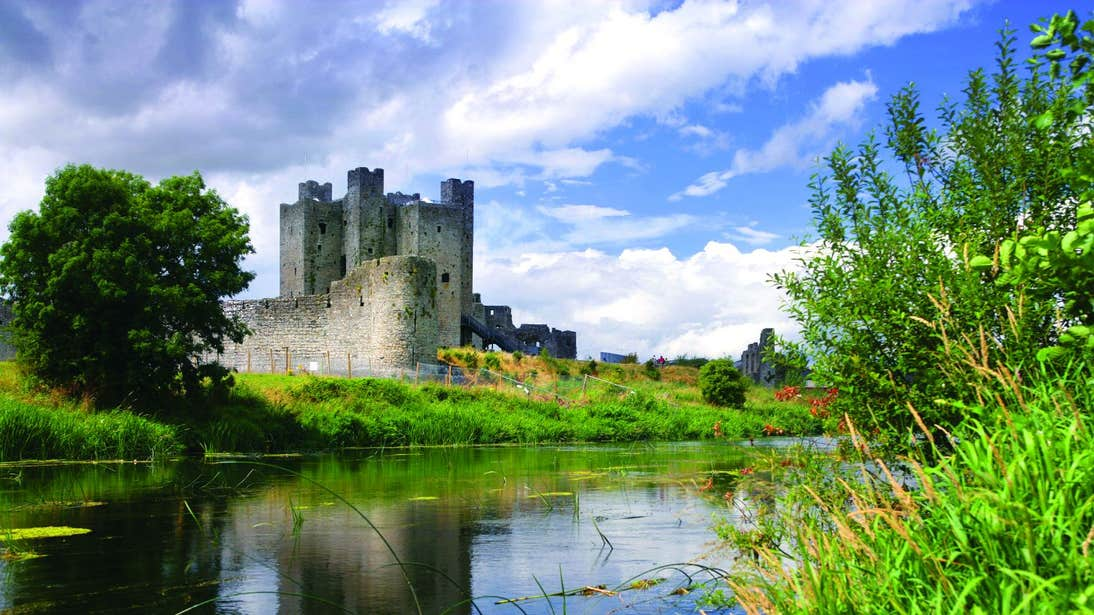 Grass growing over the river beside Trim Castle in Meath