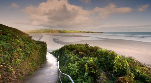 A trail leading to Inchydoney Beach, Co. Cork at sunset