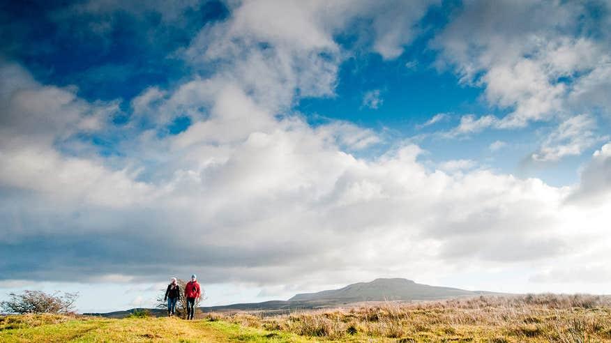 Find true wilderness in Cavan Burren Park.