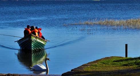 Lilliput Boat Hire