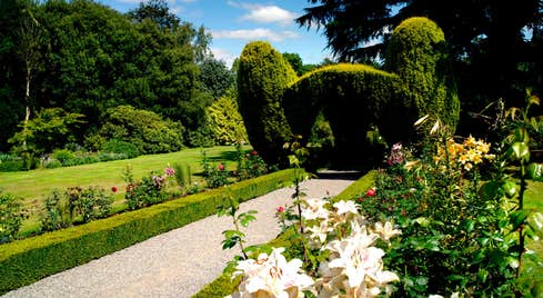 Altamont Gardens and flowers on a sunny day is just one of the great things to do in Carlow