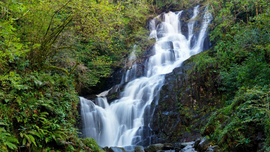 Water cascading down Torc Waterfall, County Kerry surrounded by plants